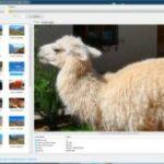 Verloren gegangene Fotos, Dokumente und Videos wiederherstellen – DiskDigger