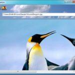 Icons aus Bilder und Fotos erstellen – Freeware